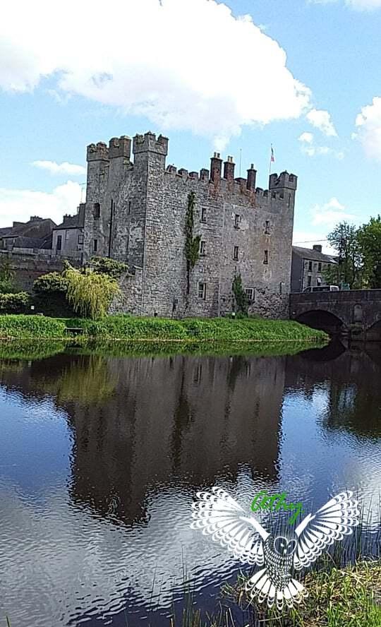Athy Ireland Whites Castle